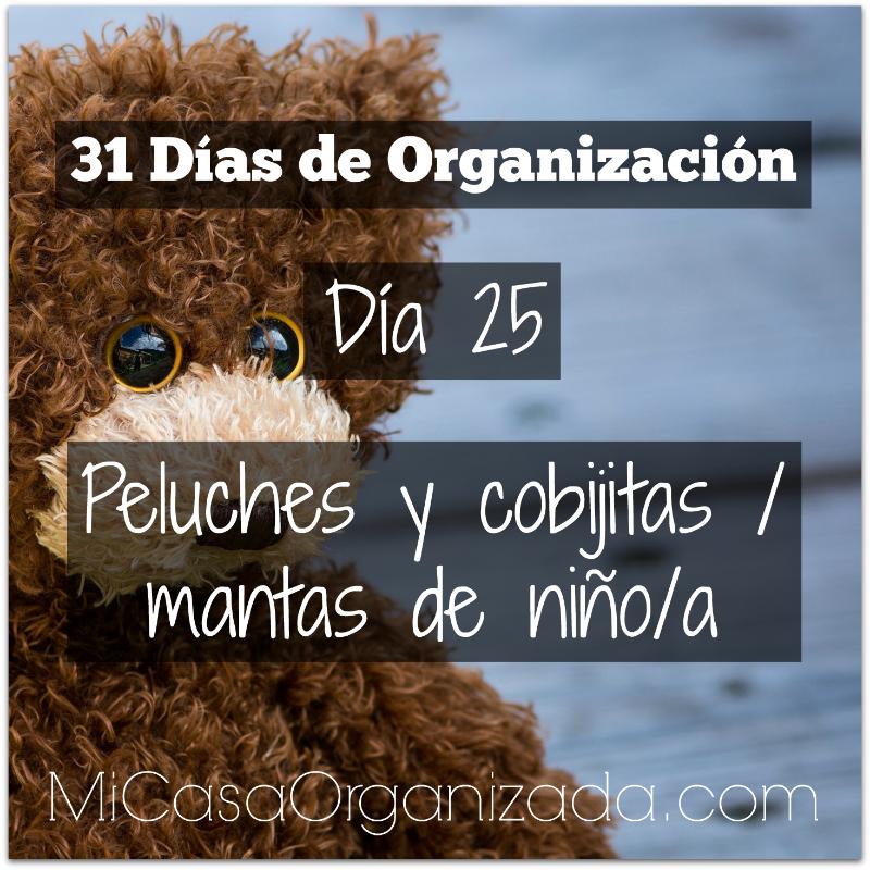 31 días de organización día 25