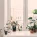 Cómo afecta la desorganización mental a la organización del hogar